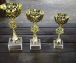 "Trofeele ""Cupei Timişul Şag"""